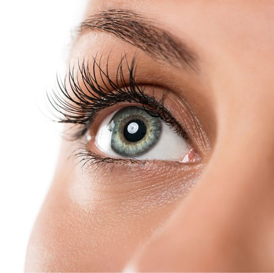 Close up photo of ellebana lash lift
